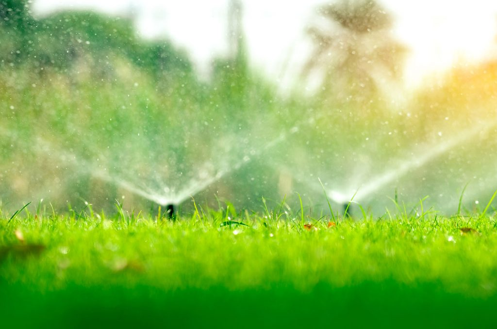 Lawn Sprinkler Service and Maintenance